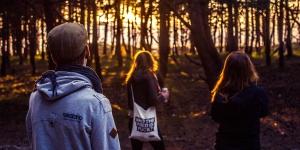 Sonnenuntergang Wald